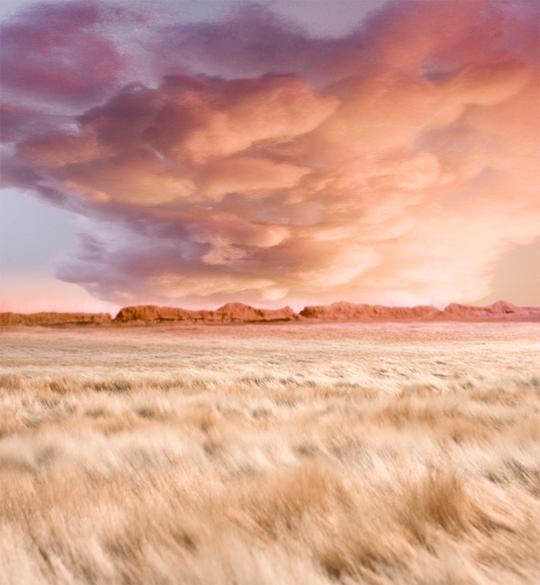 paysage15.jpg